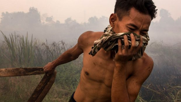 A firefighter attempts to extinguish fires in South Sumatra last year.