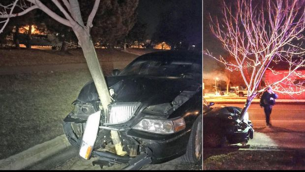 Police in Roselle, Illinois, recently stopped a car with a tree wedged in its grille. The driver was cited for driving ...
