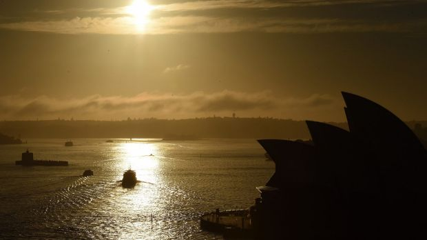Surface water temperatures in Sydney Harbour have been running well above average.