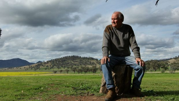 Tony Windsor is aiming for a  comeback less than three years after he retired.