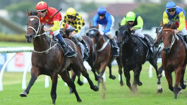 "''Too valuable"": A half-sister to star galloper Press Statement will not go under the hammer."