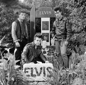 Three young men with floral tribute on the 14th anniversary of Elvis's death. Elvis Memorial Melbourne 1991, from the ...