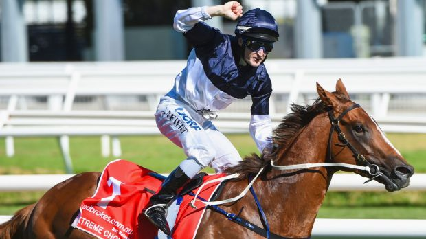 Valuable: Craig Newitt after riding Extreme Choice to victory in the Blue Diamond Stakes in February.