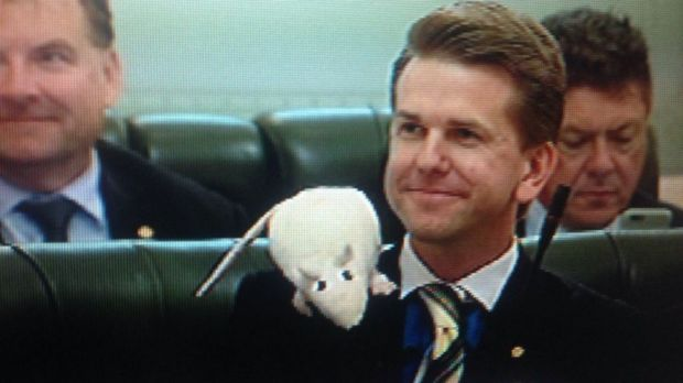 Jarrod Bleijie sports a rat in Queensland Parliament question time.