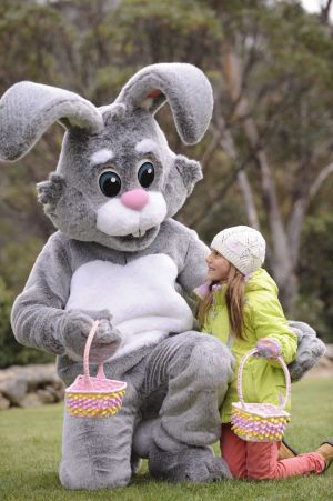 Where to find an easter egg hunt in canberra and at the top of check out where all the easter egg hunts are happening in canberra and region this easter negle Image collections
