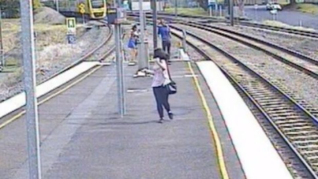 A budgie was found alive on the tracks at Chelmer Station in January.