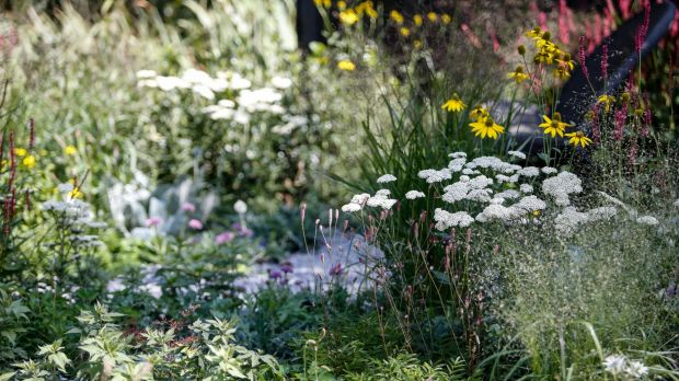 Ian Barker's  show garden was awash with perennials and had a real-life context.