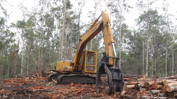 NSW EPA took a dim view of the oversight of Forestry Corp.