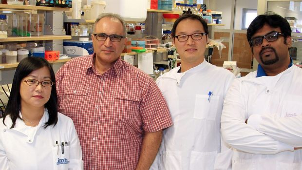 Shu-Ching Wang, George Muscat, Tae Gyu Oh and Bipul Acharya from the University of Queensland's Institute for Molecular ...