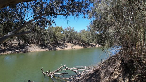 The NSW water inquiry will examine among other things prospects for the Darling River, which is now not flowing over ...