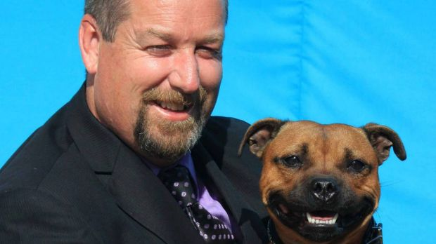 Patrick Walsh, president of the Staffordshire Bull Terrier Club of Victoria, with his dog Juno.