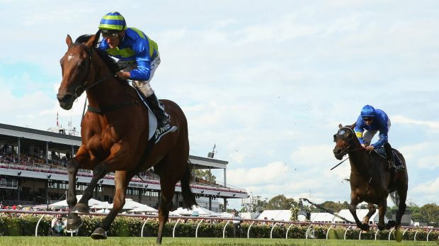 The one to give Maher some Sydney joy? Jameka will contest the Vinery Stud Stakes.