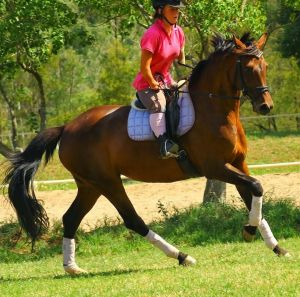 Danielle Weymark, 22, has won a number of dressage competitions and is aiming to ride for Australia in the Paralympic Games.