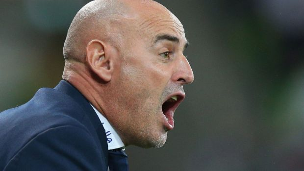 An animated Kevin Muscat urges his team on.