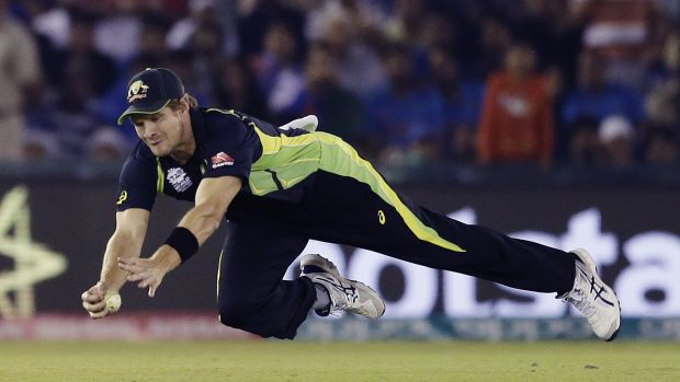 Australia's Shane Watson dives to take a catch to dismiss Yuvraj Singh.