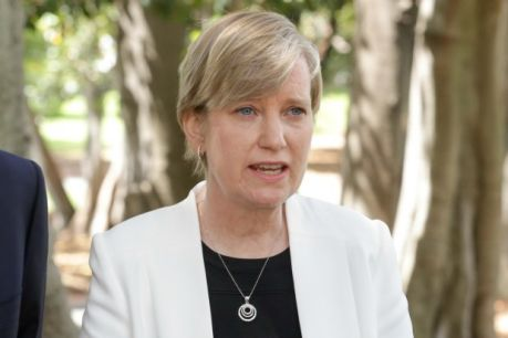 Minister for Women Fiona Richardson will take leave to deal with illness