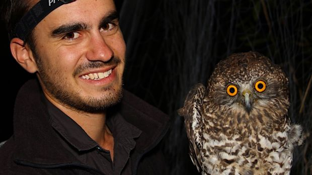 Nick Bradsworth with a captured powerful owl.