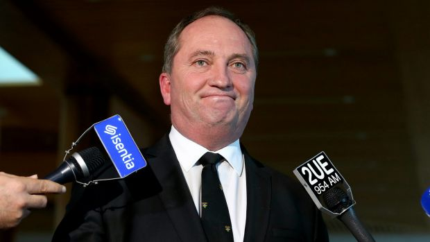Looking at the 'big picture': New advisers will help Deputy Prime Minister Barnaby Joyce respond to issues outside his ...