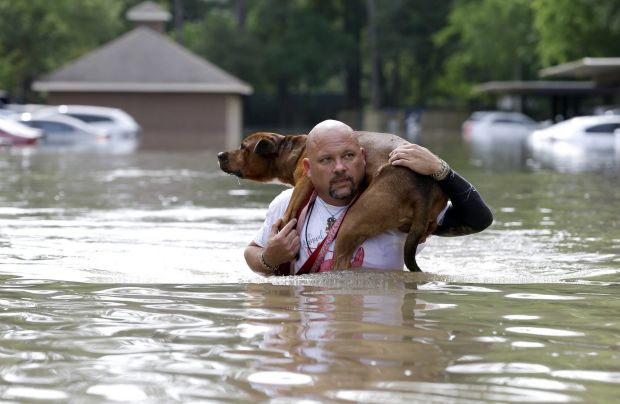Louis Marquez carries his dog Dallas through floodwaters after rescuing the dog from his flooded apartment in Houston.