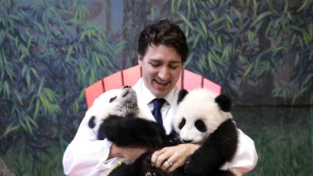 Justin Trudeau cuddles up to baby pandas. What's not to love?