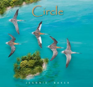 Jeannie Baker's latest book <i>Circle</i> highlights the plight of the migratory bar-tailed godwits.
