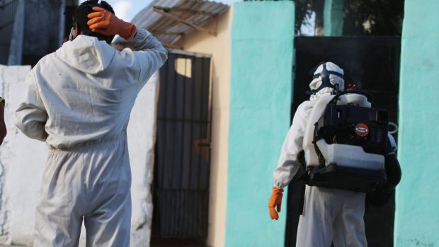 Health workers fumigating in an attempt to eradicate the mosquito which transmits the Zika virus.