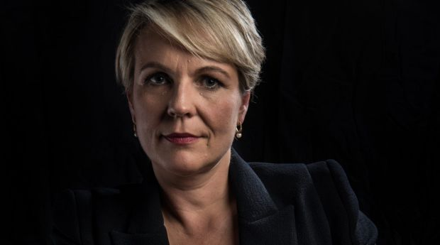 Tanya Plibersek says she was stalked and threatened with rape while working as a women's officer at UTS.
