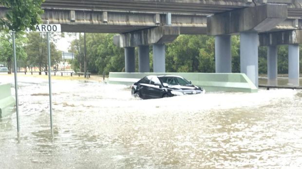 A driver fails to heed emergency services' warnings of if it's flooded forget it in Coorparoo