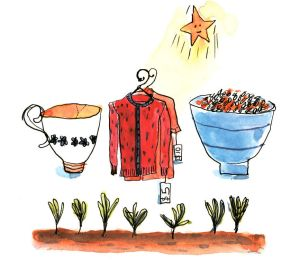 Life under a frugal star: a broken cup, clothes from an op shop, a bowl of brown rice and lentils, and vegies growing in ...