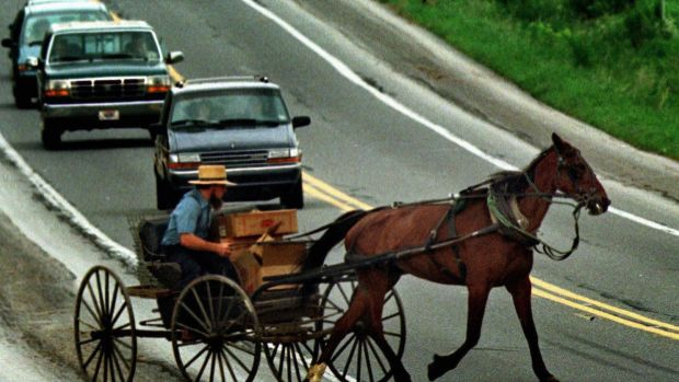 An Amish man cuts his horse-drawn buggy across traffic in Lancaster County.