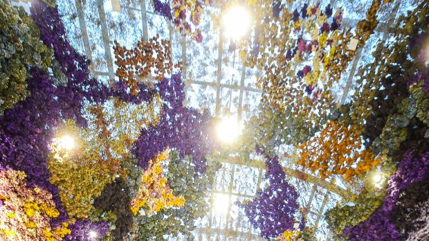 Rebecca Louise Law's 'Vision of The Canopy', a permanent inverted garden of 150,000 preserved flowers at Eastland.