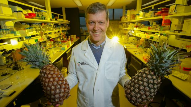 Biochemist Professor Rob Pike says enzymes found in pineapples can cure diarrhoea in piglets, reducing the reliance on ...
