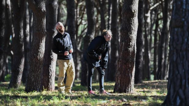 Wildlife ecologist John Martin and researcher Jessica Rooke look for yellow-tailed black cockatoos in  Sydney's ...