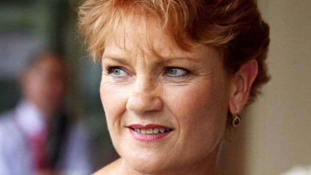 Pauline Hanson's One Nation has secured its second Senate seat with a win in Western Australia.