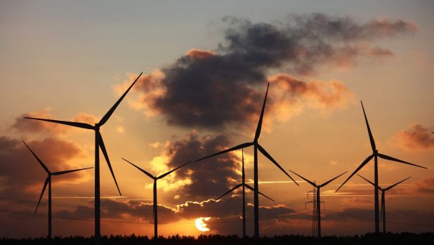 International health bodies, including Australia's National Health and Medical Research Council, have examined wind ...
