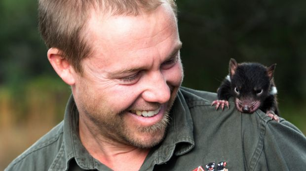 Tim Faulkner from Devil Ark in the Barrington Tops with a five-month old Tasmanian devil joey.