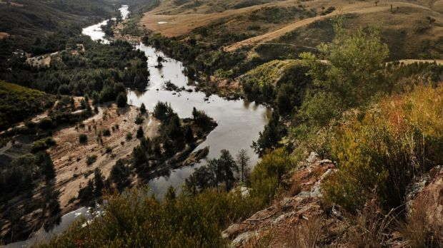 The Murrumbidgee River.