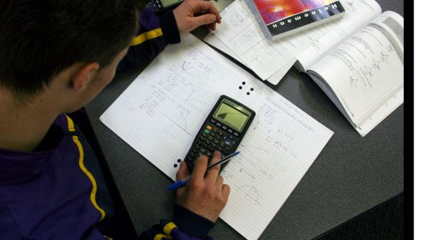 The new HSC maths syllabuses will be delayed for a year.
