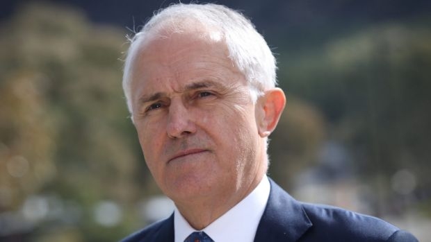 Prime Minister Malcolm Turnbull's contribution to the Coalition coffers might have made its July 2 win possible.