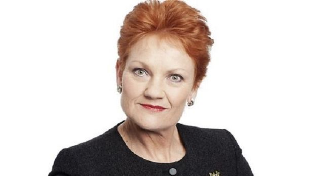 Pauline Hanson's One Nation still continues to stump the most seasoned political watchers.