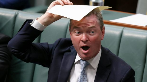 The Minister for Defence Industry Christopher Pyne during a division in the House of Representatives.