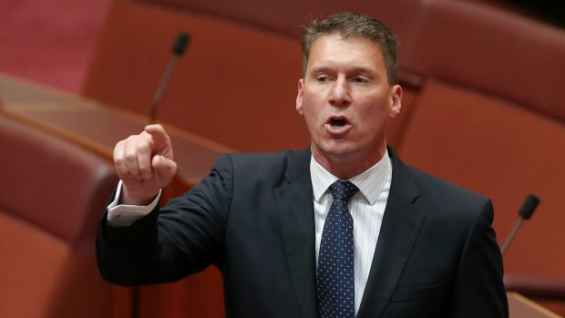 Liberal senator Cory Bernardi has confirmed he will quit the party.