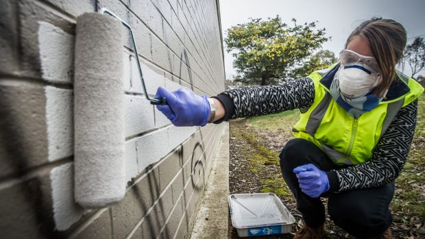 Southside suburbs are hotspots and the government hopes more people will join community graffiti busting groups to paint ...
