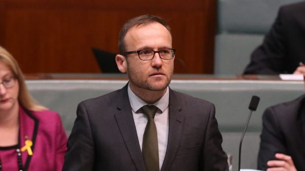 Greens MP Adam Bandt says Senator Matt Canavan should be ashamed of himself for his remarks about the ABC.