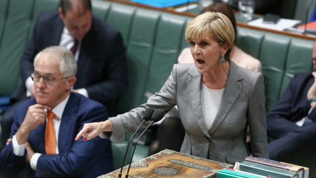 Foreign Minister Julie Bishop, pictured in question time on Monday, said Senator Hanson was entitled to her views.