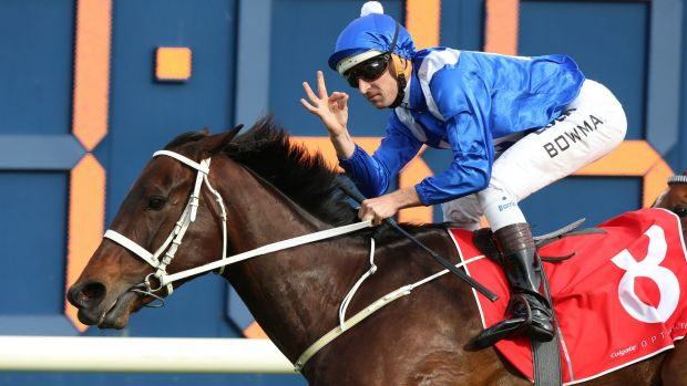 Spring highlight: Winx will be the feature act again at this year's George Main Stakes.