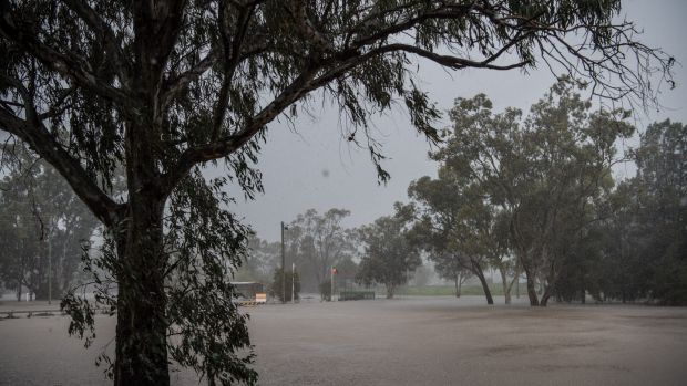 A heavy shower of rain over flooded Lake Forbes