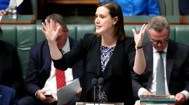 Finance Minister Kelly O'Dwyer will announce measures to give better protection to whistleblowers.