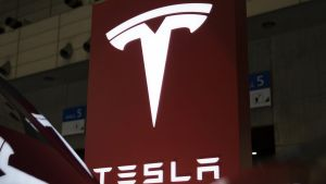 Tesla MotThe electric-car maker has seen its shares fall by almost 20 per cent since June 22.