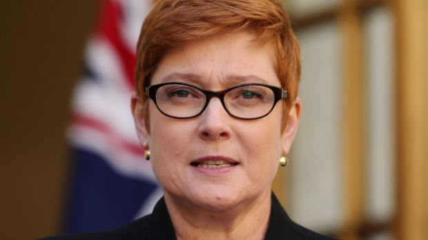 """""""The investigation into the incident is being finalised"""": Defence Minister Marise Payne."""